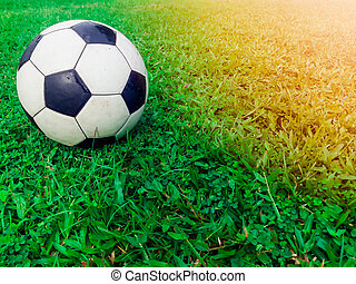 Football on the field with green grass
