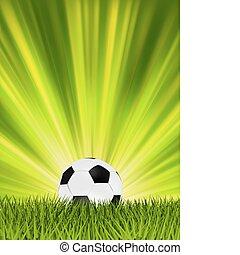 Football or soccer ball on grass