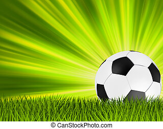 Football or soccer ball on grass. EPS 8