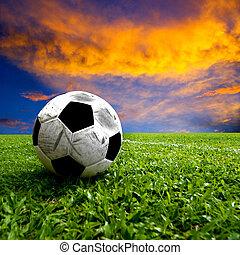 Football, real soccer ball on green grass at sunset