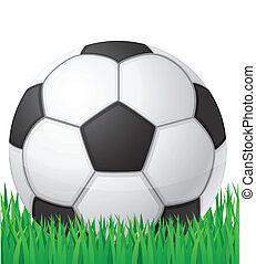football soccer ball in grass