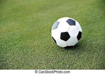 football, su, campo erba