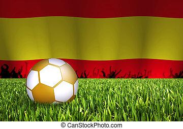 football with flag