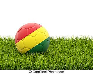 Football with flag of bolivia