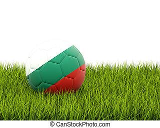 Football with flag of bulgaria