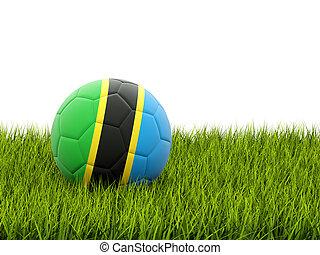 Football with flag of tanzania