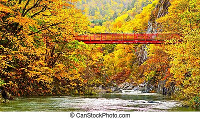 Footbridge Across an Autumn River - Footbridge Across...