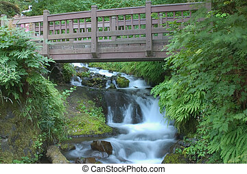 Footbridge at Wakeena Falls in the Columbia River Gorge.