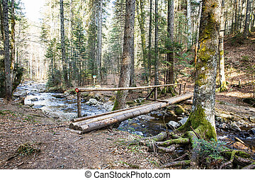 Footbridge crossing a pure mountain river in the forest