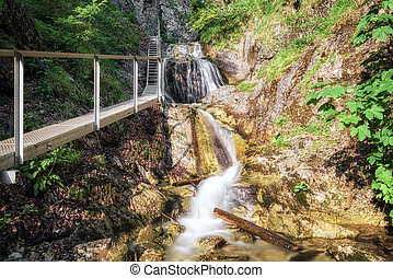 Footbridge in canyon Janosikove diery, Slovakia