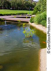 footbridges over lakes in a park