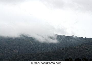 foothills fog