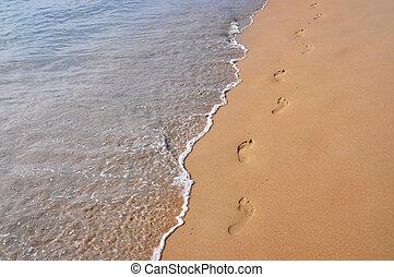 footmarks, på, den, sandig badstrand