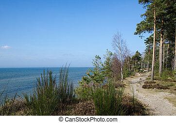 Footpath along the coast