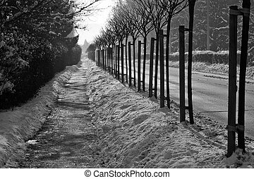 footpath along the road in the snow