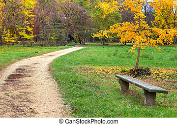 Footpath and bench in autumnal park. - Stone bench and ...