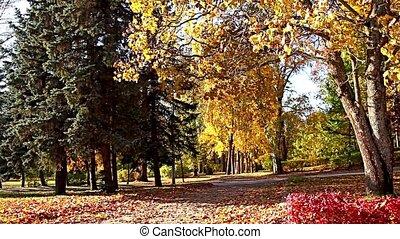footpath autumn landscape - Autumn footpath stretching into...