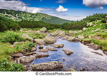 Footpath by stream in the Tatras Mountains, Poland, Europe