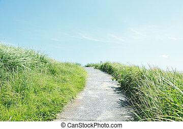 Footpath - concrete footpath