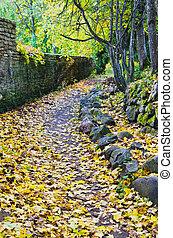 Footpath in fallen down leaves in autumn park