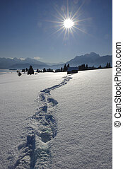 footpath in snow at alps in bavaria, germany