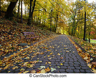 Footpath in the autumn city park strewn with yellow fallen...