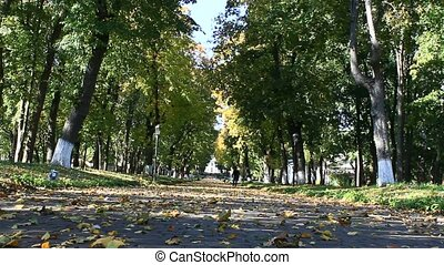 footpath in the autumnal park in the beginning of October