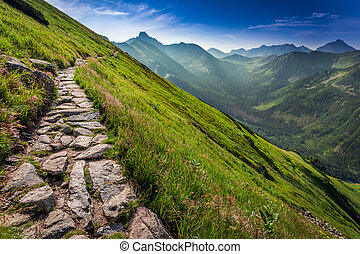 Footpath in the Tatras Mountains at sunrise, Poland, Europe