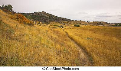 footpath, ligado, um, declive, de, mountain.