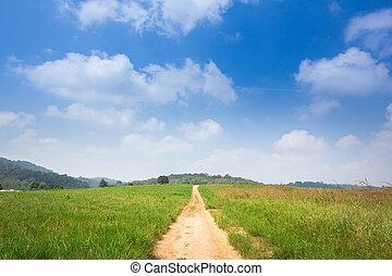 footpath, longo