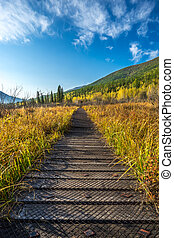 footpath on mountain in Kanas of China