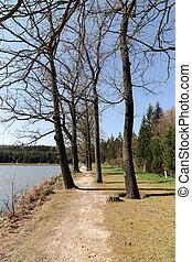 Footpath on the pond dike - Narrow footpath on the pond dike