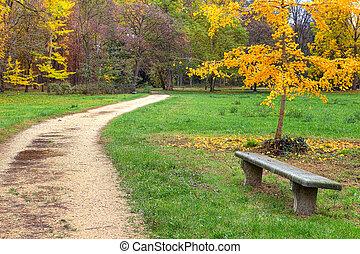 footpath, park., herfstachtig, bankje
