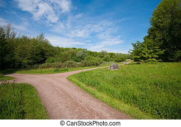 footpath, park