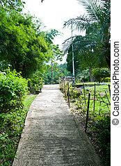 footpath, parque