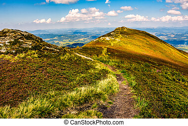 footpath through a meadow on mountain ridge - winding...