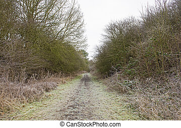 Footpath through rural countryside landscape in winter