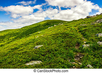 footpath through the mountain ridge - summer mountain...