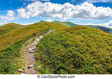 footpath to the mountain top