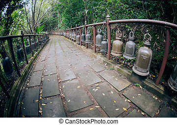 Footpath to Wat Phra That Doi Tung. - Footpath to Wat Phra...