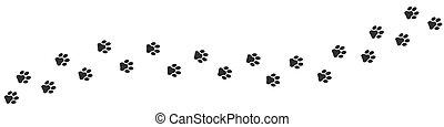 Footpath trail of cat