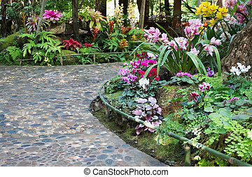 footpath with beautiful flowers in the beautiful garden