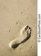 Footprint in sand.