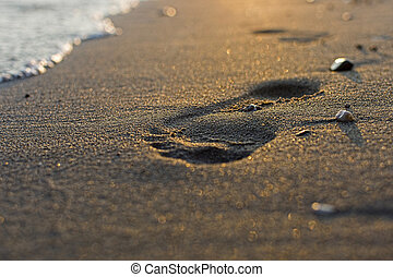 Footprint in the Sand at Sunset Close Up