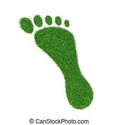 Footprint of grass.