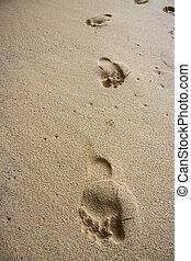 footprint on beach sand