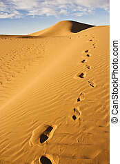 footprint on sand dune - a footprint trail on a sand dune in...