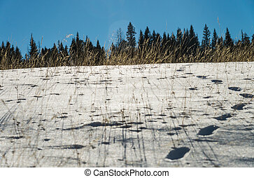 Footprint on snow and blue sky