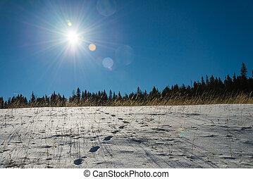 Footprint on snow and blue sky with Sun flare