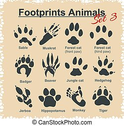 Footprints Animals - vector set. - Footprints Animals -...